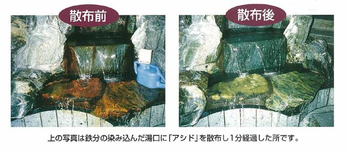 アシド散布前/散布後比較写真